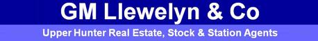 G M Llewelyn & Co