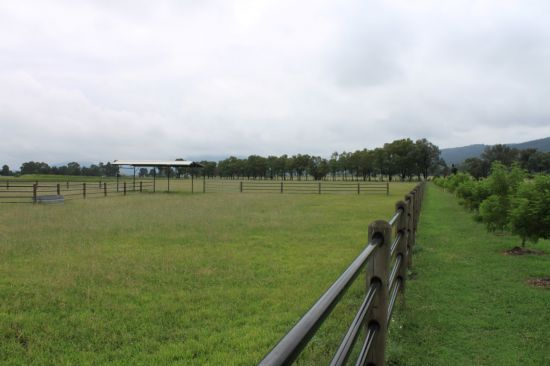 Pony paddocks on the edge of town