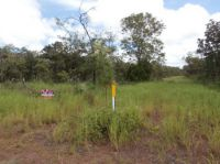 Property in Dundee Forest - $170,000